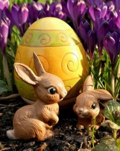 Osterhasen am Ei